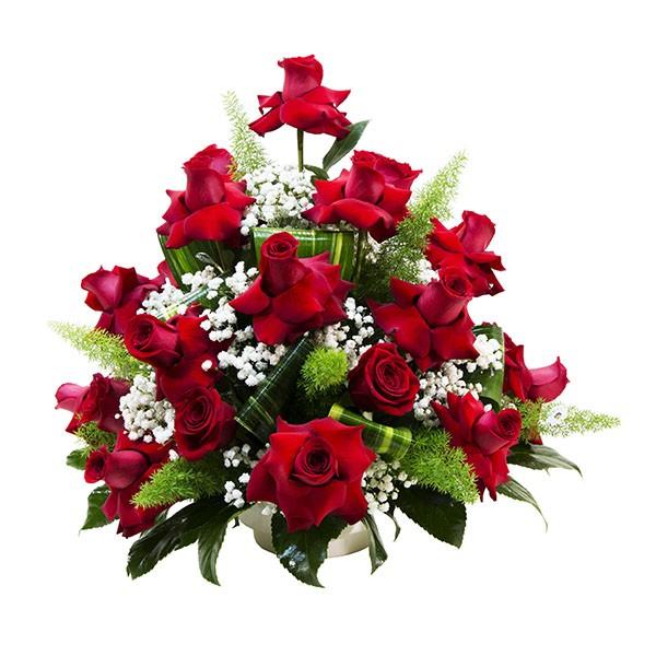 centro-rosas