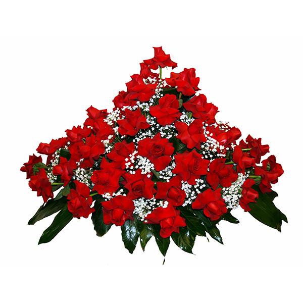 centro-rosas1