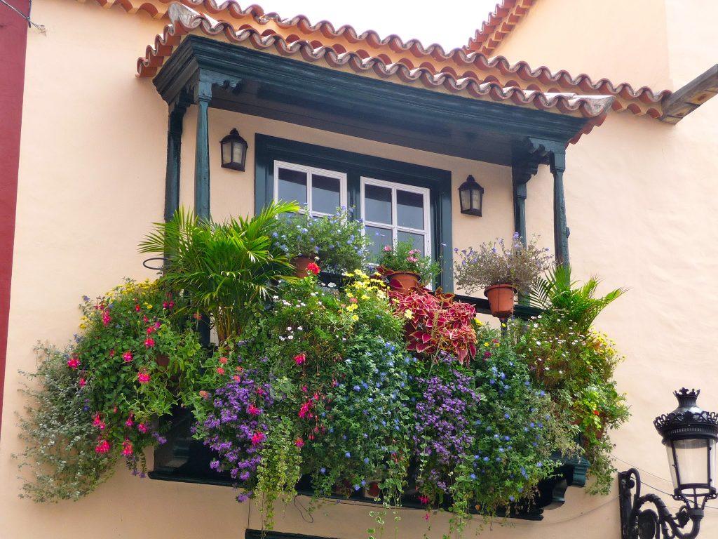 balcones-y-ventanas-flores-11